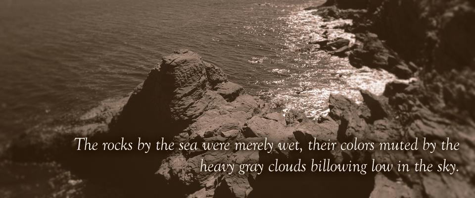 rocky-coastline-rose